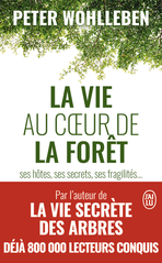 La vie au cœur de la forêt