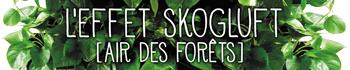 Bandeau Novembre 2018 - Skogluft
